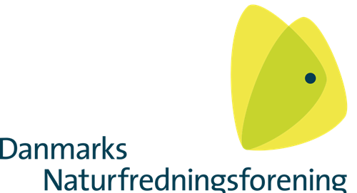 dn logo transparent