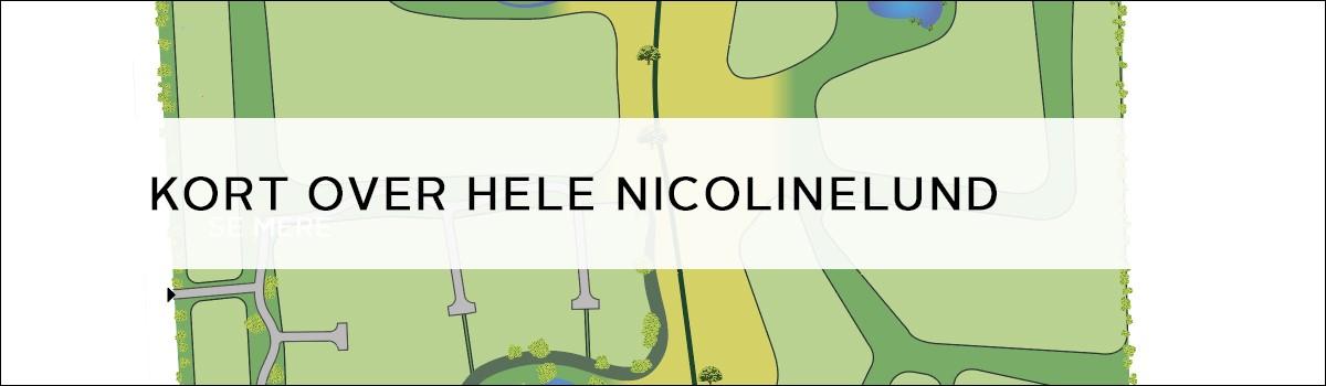 Kort over hele Nicolinelund
